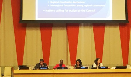 Presentation of UN Secretary-General report on regional cooperation in the economic, social and related fields to ECOSOC, 25 July 2017, New York