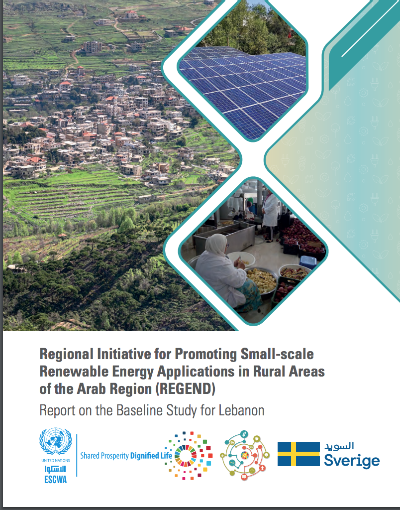 Report on the Baseline Study for Lebanon