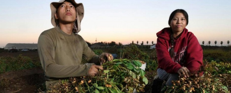 Asia-Pacific Regional Food Systems Dialogue – a call to action