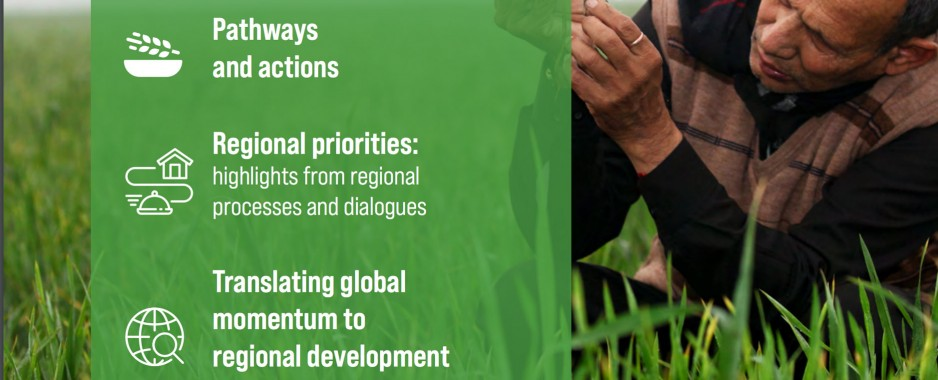 UN regional commissions launch policy brief on transforming food systems